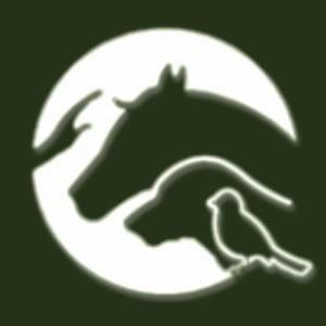 The Humane Center for Animal Welfare (Jordan)
