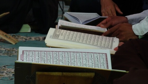 Islamic Teaching of Concerns for Animals