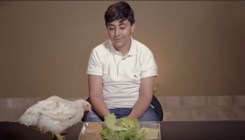 Watch Kids Confronted With What We Do To Animals